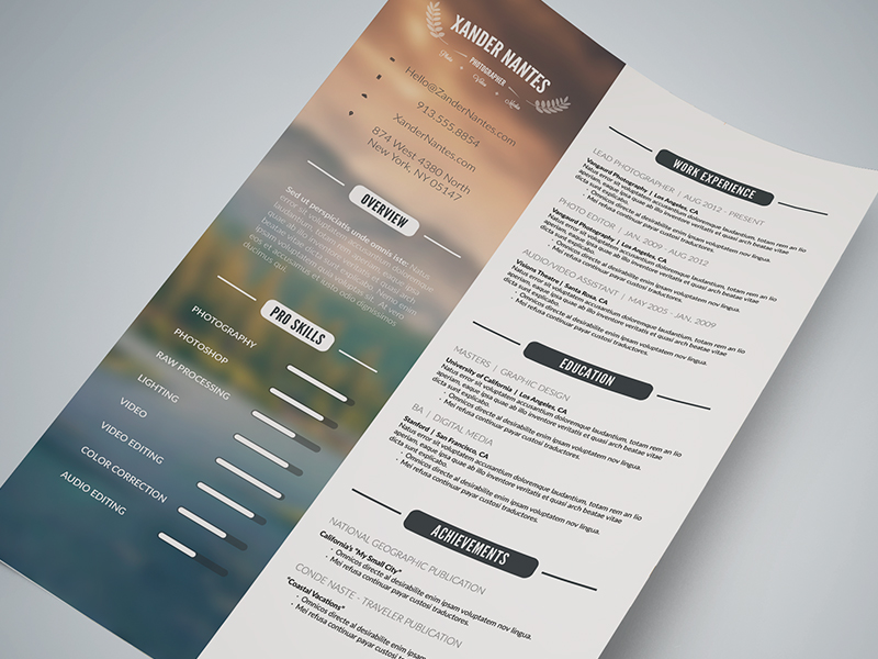 CleanResume_preview2