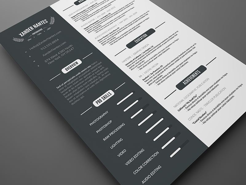 CleanResume_preview3