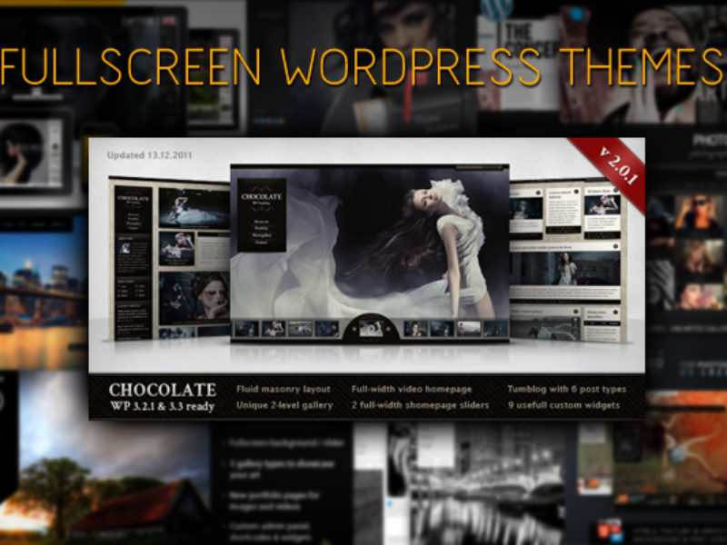 10 Full Screen Wordpress Theme Templates